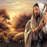 The Shepherd's Presence - Audio