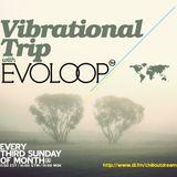 EvoLoop - Vibrational Trip 015 (11-20-2011)