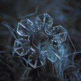Afro - Snowflake Curve [dru050]