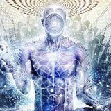 Shark Finn Soup - Intense Psy/Tech (Elysian Circus appliacation mix)