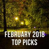 EDM February 2018 Top Picks Mix