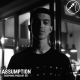 Deepicnic Podcast 251 - Assumption