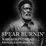 Bigmikeydread Reggae Radio - Spear Burning