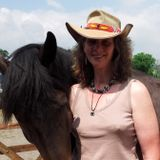 All Things Equine with a Twist - Saturday 2nd August 2014