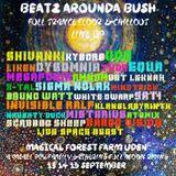 dj ions live @ beatz arounda bush 2019