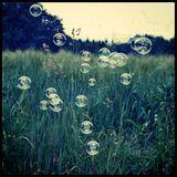 Wobble Bubble Balkan Beats @ Serenas Birthday 30.11.2013