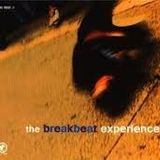 The Breakbeat Experience (vinyl comp. mixed)