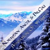 Northern Angel & Dr. Gri - Sensation of Winter (#trance collab)
