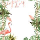 Tropical Friday Chill og 4Play edition (næsj og da)