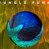 HennessyLive presents Jungle Funk 20