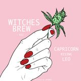 WITCHES BREW VII