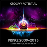 GROOVY POTENTIAL PRINCE 2009-2015
