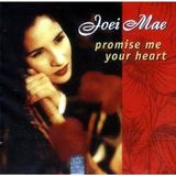Promise Me Your Heart (Edit Mix by Paradise & Dayer)