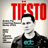 Andre Fly - IDM #103  BEST HITS OF TIESTO-65TRACKS-160 MINUTES (31.12.18)