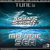 2014-07-18 Aquatic Simon - Melodic Sea (Tunel Club Closing Gig - Poznan)