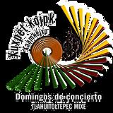 Banda Municipal Intermedia en Domingo de Concierto