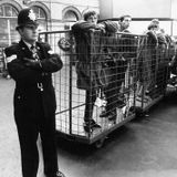 DJ Gremlins continued history of Brighton bands