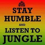 dj kevlar jungle mix 28th july 2016