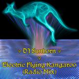DJ Sunborn - Electric Flying Kangaroo (Radio Mix)