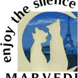 ENJOY THE SILENCE con Dj Marvedì - French Music 70-80-90