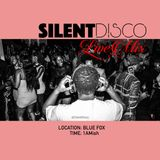 SILENT DISCO LIVE MIX (10.01.17) at BLUE FOX MN