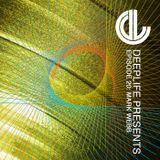 Deeplife Presents Episode 020 - 12.2.2015 - Guest Mix Mark Webb