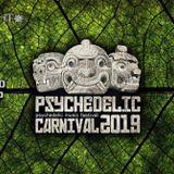 Adren Aline (Trilobite Music) @ Psychedelic Carnival 6 - Moonlight Music - Lima - Perú - 08.03.2019