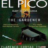 FLAMENCO CORTAO IV  // 100%  CABALLO //