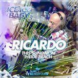 dj Ricardo @ Heide Beach Club 28-06-2015