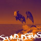hofer66 - sound of dolphins - live at ibiza global radio 180628