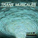 LE ROCK INDE DANS TOUS SES ETATS - EMISSION 13 SAISON 2 - SPECIALE TRANSMUSICALES DE RENNES