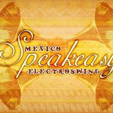 SPEAKEASY MEXICO & DLOREAN MUSIC PRESENTS A PAROV STELAR REMIX BY DJ ROY GARZA