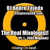 DJ Andre Tejeda - The Real Mixologist! Pt. 1 (2003 Megamix)