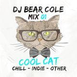 Cool Cat Indie Dance Mix / Dance, House, NuDisco, Tropical, Indie / Instagram & Socials @djbearcole
