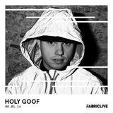 Holy Goof - FABRICLIVE Promo Mix