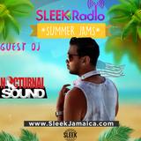SLEEK Radio - Miami Heat - Nocturnal Sound