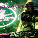 Alan Flava - Fozzyfest 2017