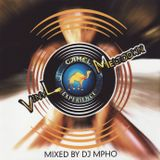 VINYL MELTDOWN 1 - Mixed by DJ Mpho