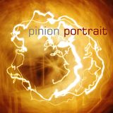 Pinoir   12#2   Portrait 2012 (Part C: Liquid)