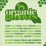 Organic grooves – live with Olav, Chrizz and Roberto