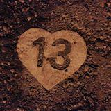 13 tracks vol. 13
