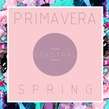 Primavera Spring (Live Mix)