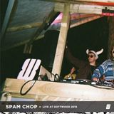 Spam Chop - Live at Gottwood 2015