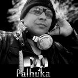 DJ Palhuka  Night Club