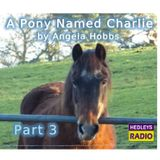 A Pony Named Charlie - Part 3
