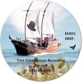 Tree_Greenhouse_Special_Live_-_Emiss_Deep_22-07-11
