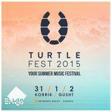 Turtle Fest DJ Contest Ennis Mix