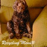 Recycling_Menü #funny_räzzle