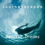 PGM 002: Aquatic Dreams