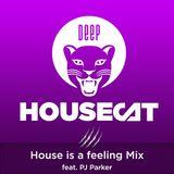 Deep House Cat Show - House is a feeling Mix - feat. PJ Parker